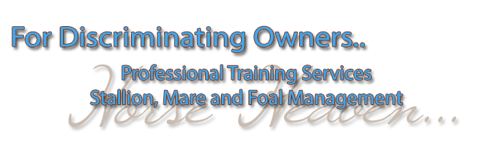 Stallion, Mare and Foal Management